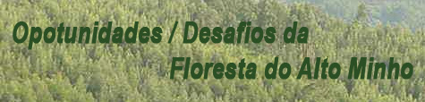 Floresta do Alto Minho